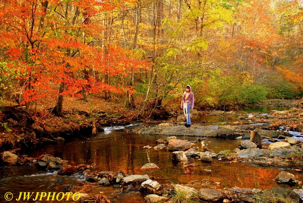 Gulpha Gorge Creek Hottie 1