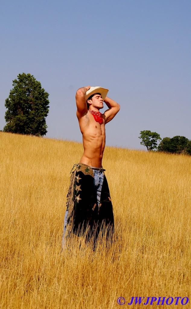 Hayfield Cowboy Art 1