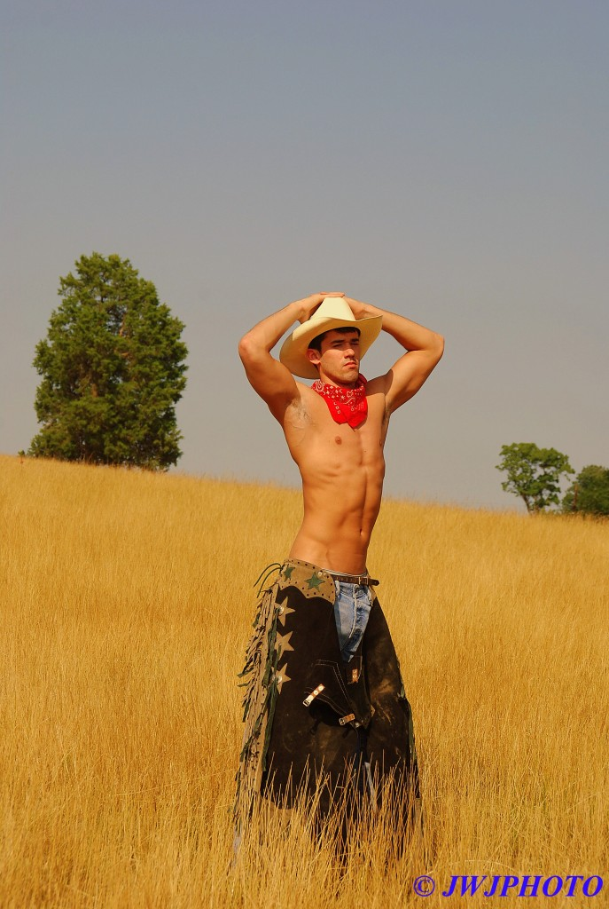 Hayfield Cowboy Art 4