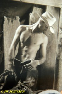 Cowboy Art 2
