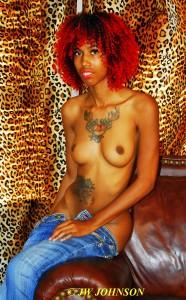 15 Leopard Backdrop Flirt