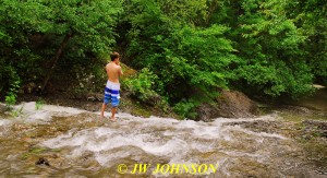 47 Board Shorts Waterfall