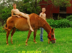 68 Horse Hotties