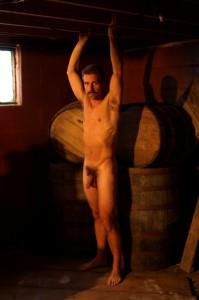 wine cellar stud