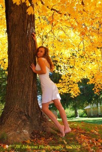 Babe Under the Old Maple Tree
