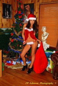 Sexy Santa Bag Babe